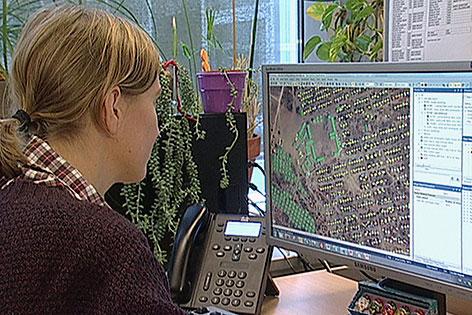 Frau sitzt vor Computerbildschirm