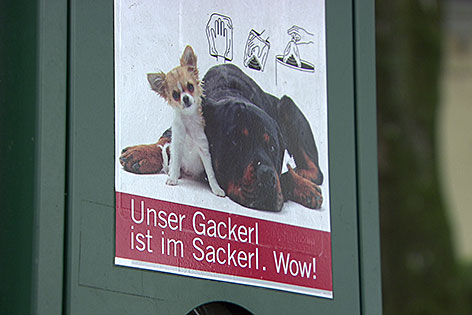 Spender für Hundekotbeutel (Gassisackerl)