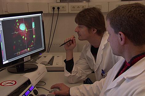 Forscher vor dem Computer im Labor