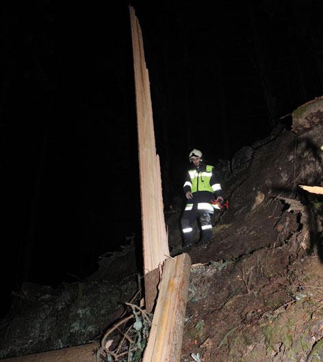 Tödlicher Forstunfall in Reith im Alpbachtal