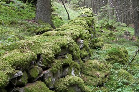 Noreia Kelten Funde Kirchberg Görtschitztal Plattform Tal der Könige