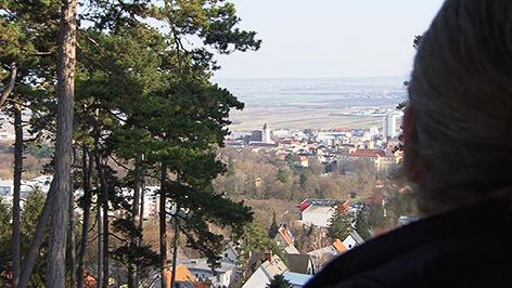 Blick von der Gloriette über Eisenstadt
