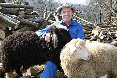 Robert Zehentner mit Schafen