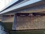Brückenlager Reichsbrücke