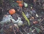 Lebensmittelverschwendung, Umweltdienst, Müll