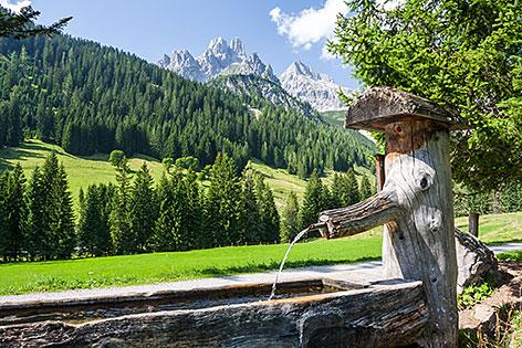 Brunnen der Meeräugl-Quelle in Filzmoos