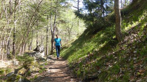 Waldsteig Locherboden