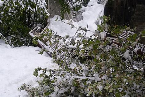 28.04.16 Schneechaos Aufräumarbeiten