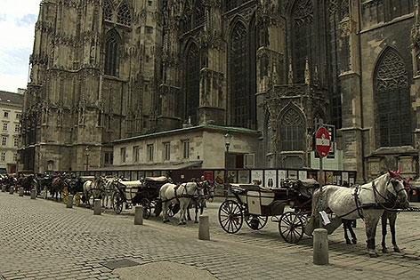 Fiaker am Stephansplatz
