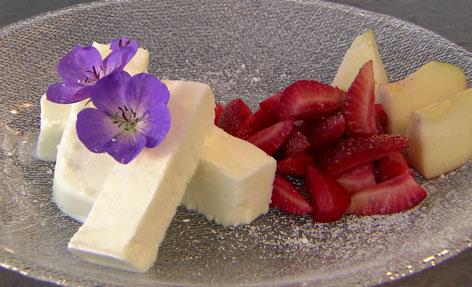 Frozen Yoghurt mit Holler