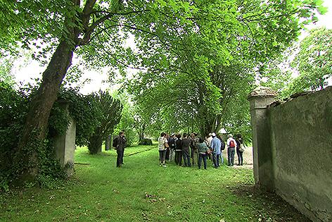 Jüdischer Friedhof Sankt Pölten