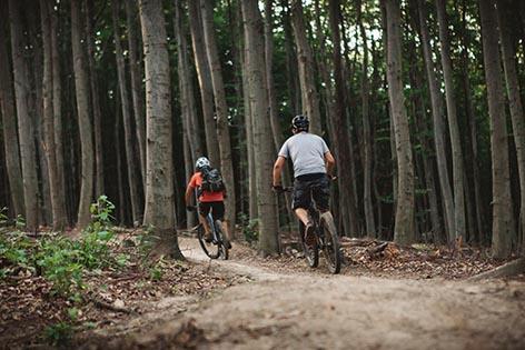 Mountainbiker Wienerwald