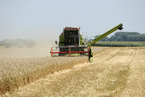 Ernte Getreide Landwirtschaft Feld