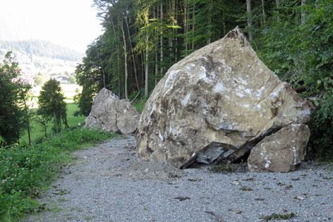 Felsbrocken in Wiesing
