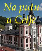 Celjanska katedrala