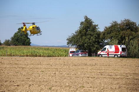 10 Verletzte bei Bauernhof