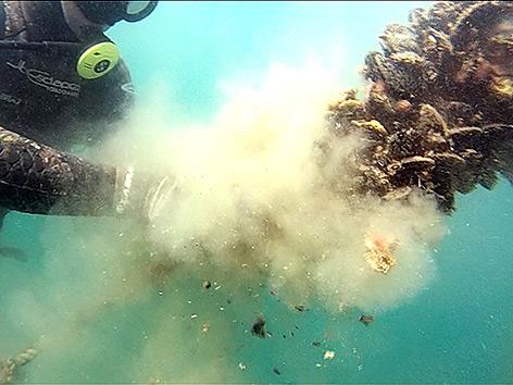Unterwasser Branzinzucht Piran