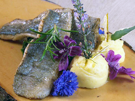 GuMÖ Rezept 12.9. Mellau