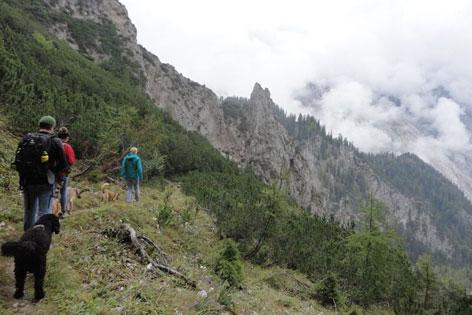 Mit drei Hunden am Berg auf einem schmalen Steig