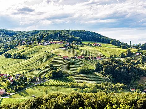 Steiermark Weinweg Der Sinne Steiermark Heute
