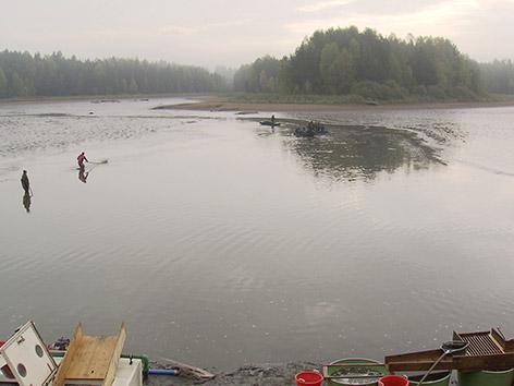 Abfischen Litschau