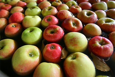 Mehrere Äpfel