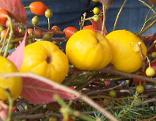 Herbst-Deko