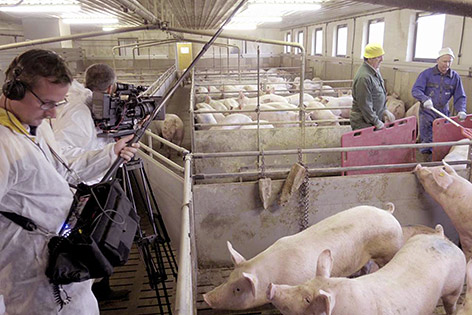Bauer unser Film Schabus Doku Kinostart Landwirtschaft