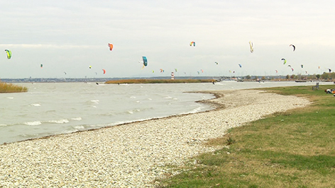Kitesurfer bei Podersdorf