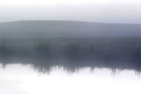 Teich im nebel (Symbolfoto)