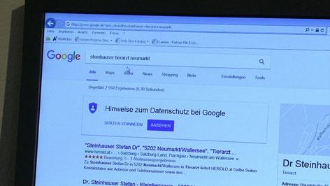 Suchmaschine Google Eintraege Tierarzt