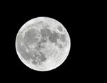 Der volle Mond aufgenommen im Prater am Montag, 14. November 2016, in Wien