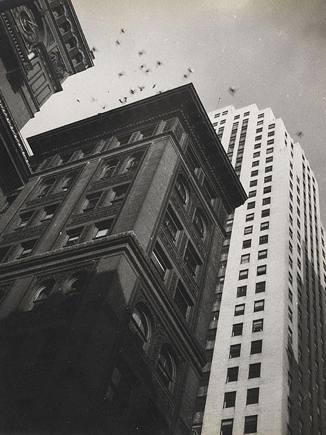 Robert Haas-Fotos