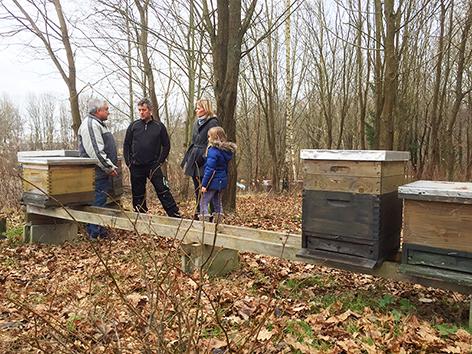 Bienenstöcke gestohlen