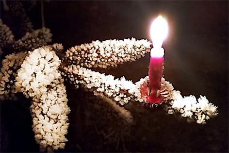 Kerze auf einem mit Schnee bedeckten Tannenast Christbaum