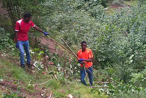 Zwei junge Asylwerber bei Waldarbeit