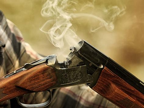 Schusswaffen Vorarlberg