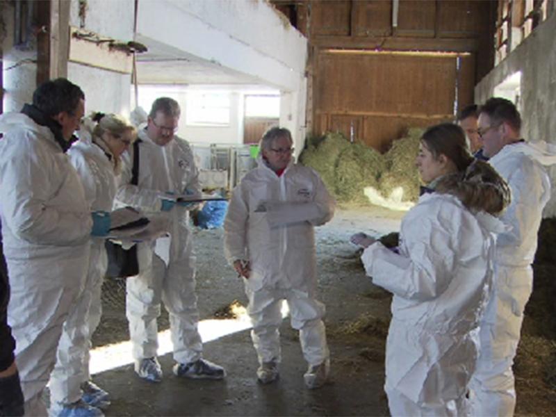 Expertentagung zu Tierseuchen