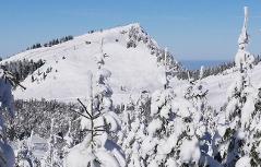 Gaißau Gaissau Hintersee Skischaukel Krispl Skifahren Winter Skifahren Wieserhorn Wieserhörndl Anzenberg Skitourismus Wintertourismus Schnee