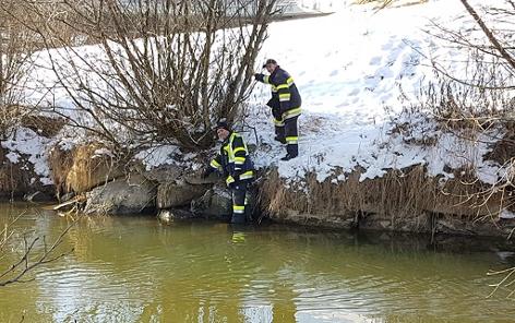 Biber Villach Rettung Feuerwehr eingeklemmt Seebach