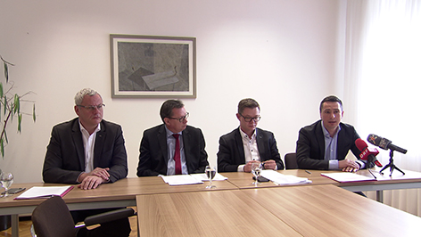 Steiner, Darabos, Molnar, Hergovich