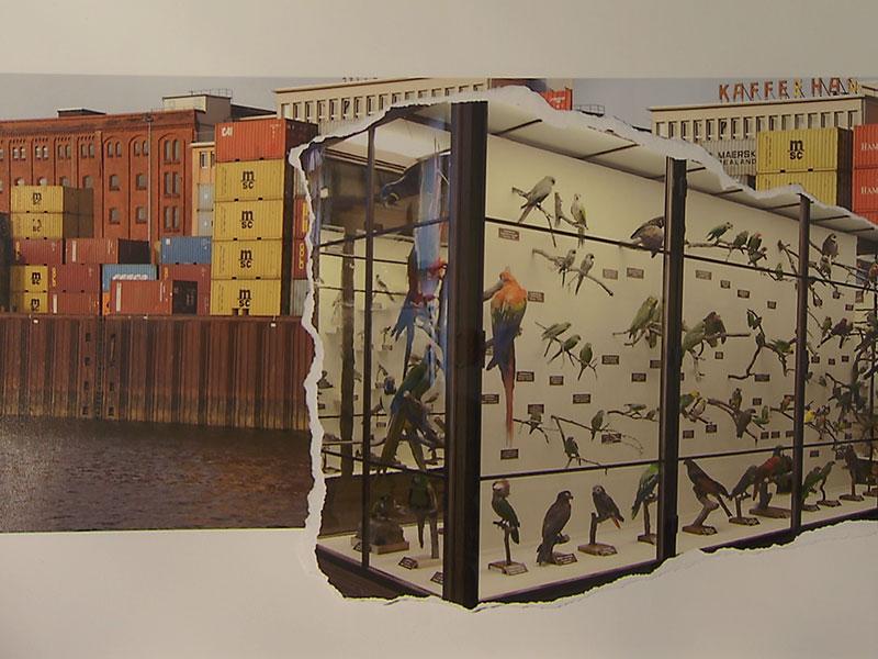 Gabriele Sturm Ausstellung Galerie 3