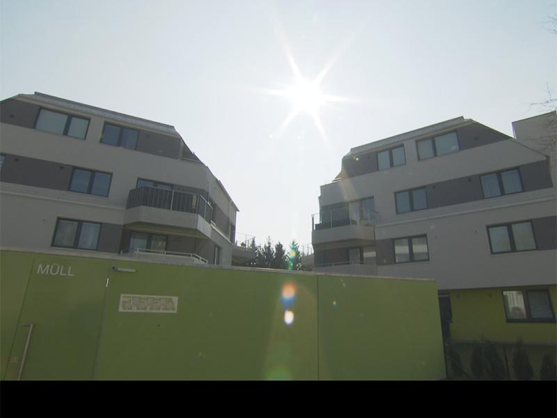 Regenwasser als Klima-anlage für Haus gewinnt Umweltpreis der Stadt