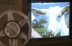 Amateurfilme Aufruf Bevölkerung Schmalfilme