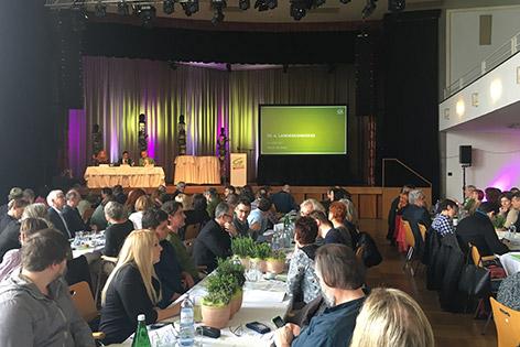 Parteitag der Grünen in Ybbs