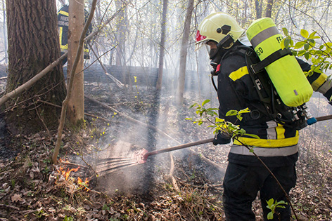 Waldbrand in Krems-Hollenburg