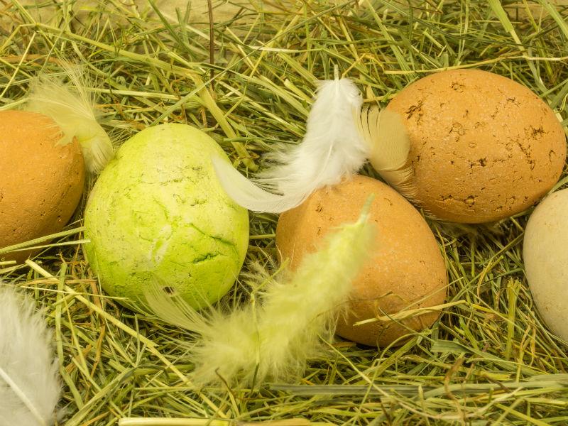 Ostereier im Nest mit Federn