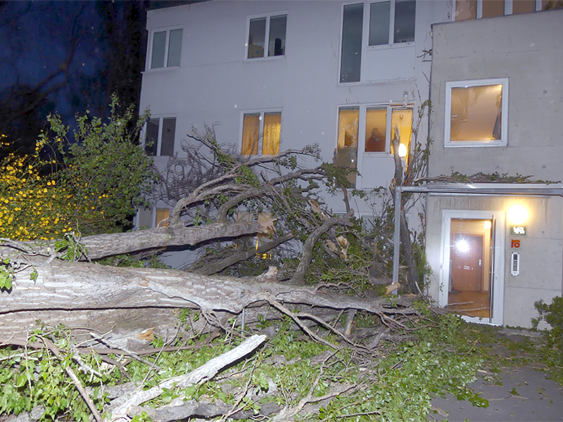 Sturm in Graz