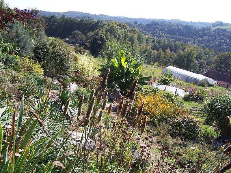 Exotisches Gartenparadies Philemons Garten