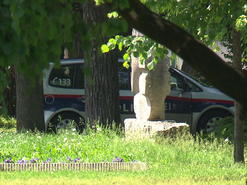 Polizeiauto Stadtpark Wiener Neustadt Drogenmissbrauch